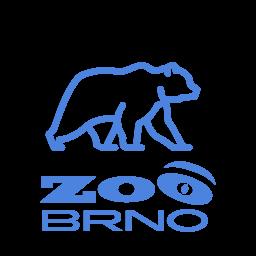 Zoo Brno - Medvěd kamčatský