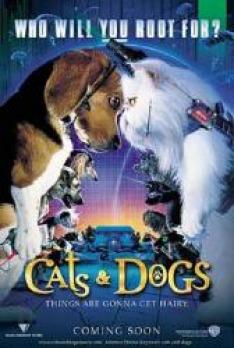 Jako kočky a psi