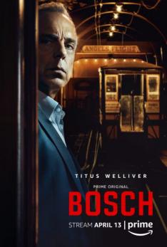 Bosch IV (8)