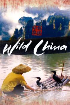 Divoká Čína (2)