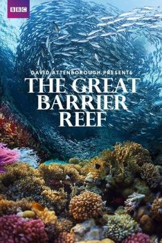 David Attenborough: Velký bariérový útes (2)