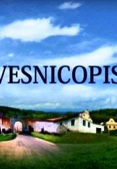 Vesnicopis (Víska)