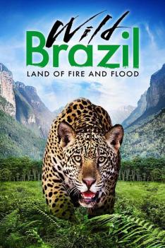 Divoká Brazílie (1)