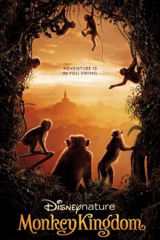 Království opic