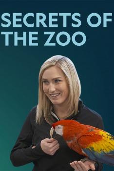 Tajemství zoo - výběr (Chirurgové)