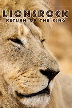 Lví skála - návrat krále