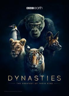 David Attenborough: Zvířecí dynastie (2)