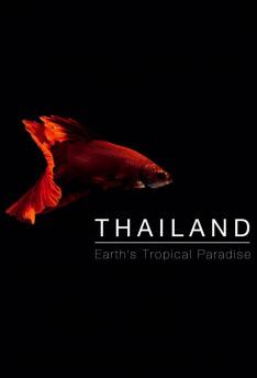 Divoké Thajsko (3)