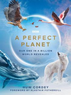 Dokonalá planeta (3)