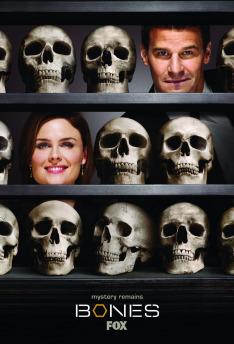 Sběratelé kostí IV (11)