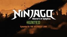 Ninjago IX (7)