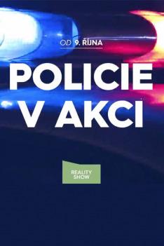 Policie v akci USA XXVIII (2)