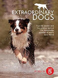 Mimořádní psi (9)