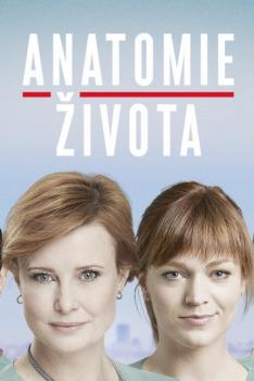 Anatomie života (Havárie)