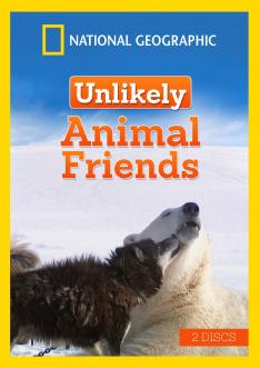 Netradiční zvířecí přátelství V (4)