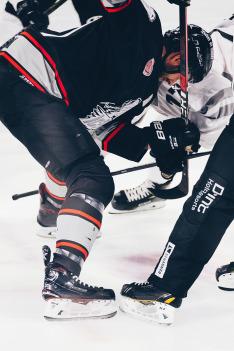 Hokej: Česko - Itálie