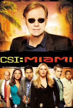 Kriminálka Miami VIII (Čest rodiny)