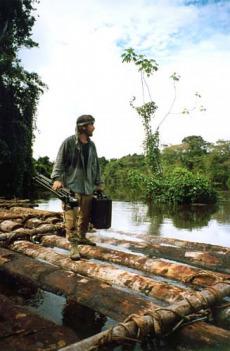 České stopy v rostlinné říši Latinské Ameriky (Padre Soukup)