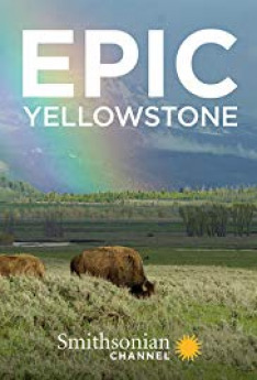 Velkolepý Yellowstone (4)