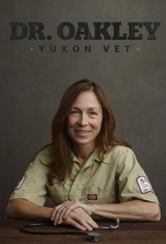 Yukonská veterinářka VI (Zázračný pes)