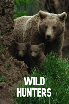 Lovci z divočiny (Medvědi)