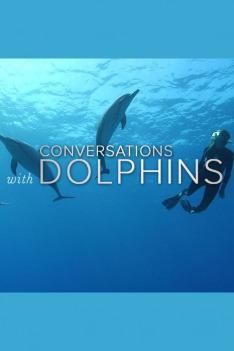 Komunikace s delfíny (1)