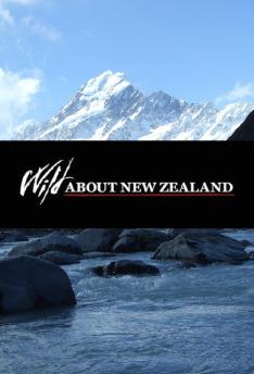Divočinou Nového Zélandu (3)