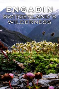 Divoké Švýcarsko (4)