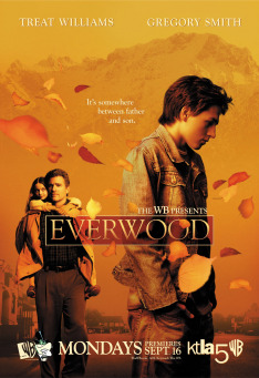 Everwood II (13)